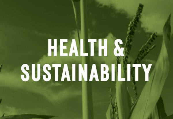Health and Sustainability Chapter from Town of Normal Comprehensive Plan
